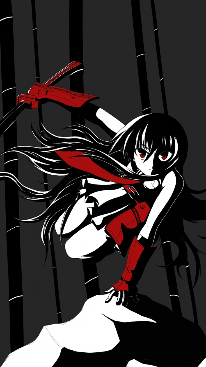 80 Akame Ga Kill Apple Iphone 5 640x1136 Wallpapers Mobile Abyss