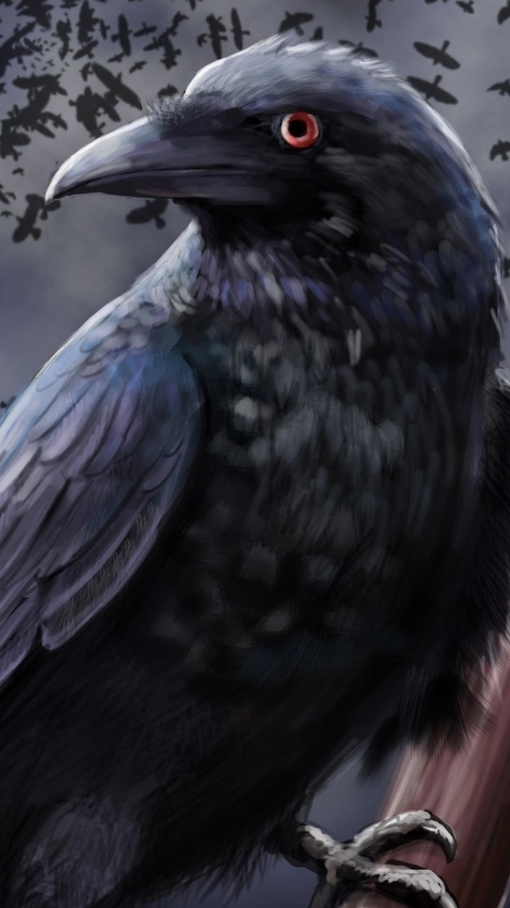 Fantasy Bird 720x1280 Wallpaper Id 243911 Mobile Abyss