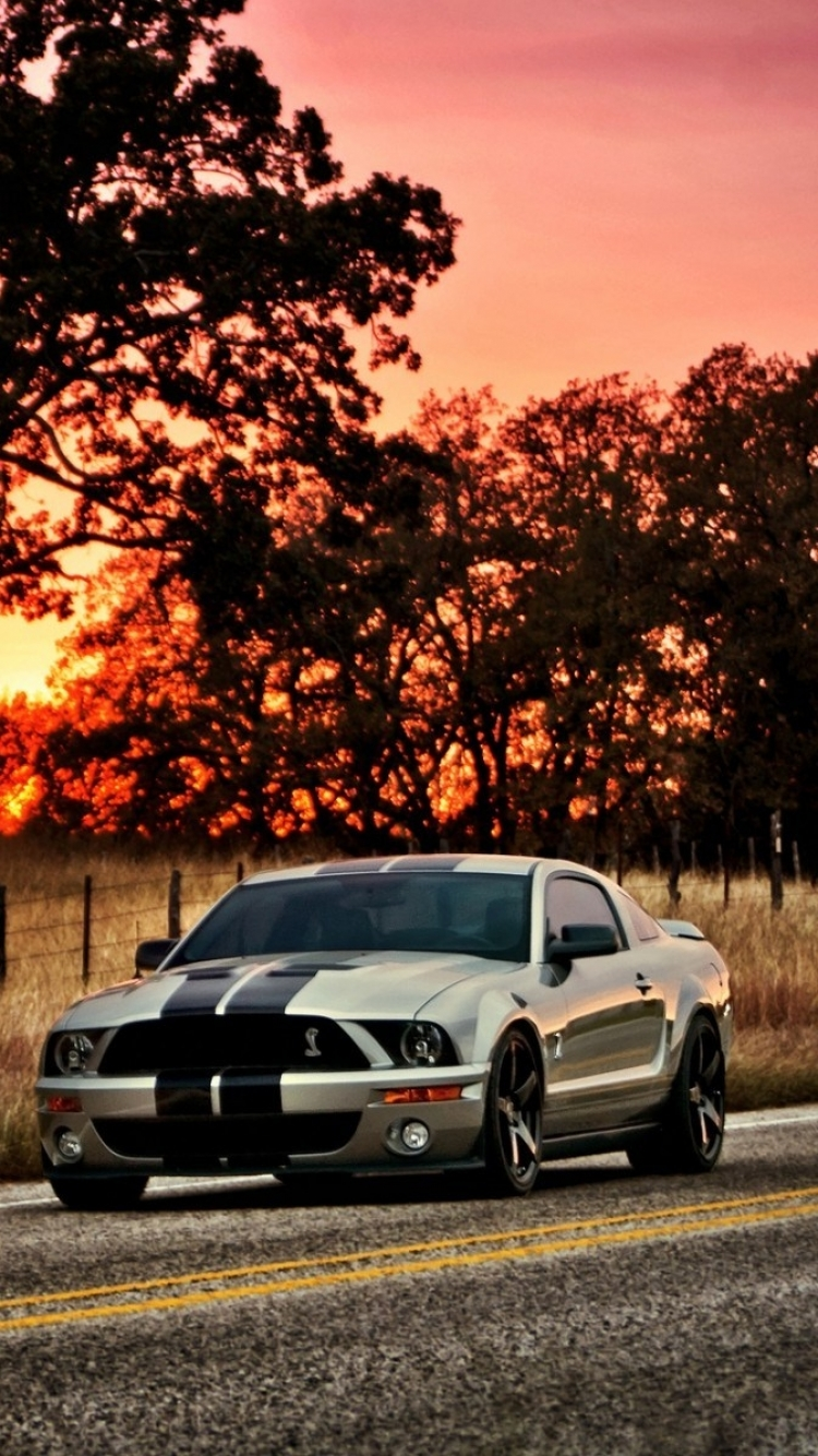 Vehicles ford mustang shelby gt500 750x1334 mobile wallpaper