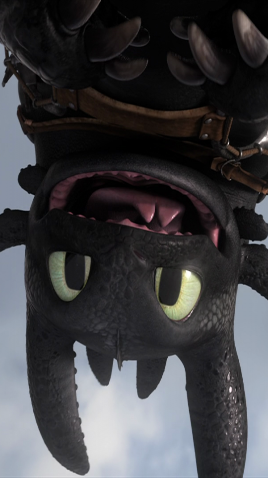 Movie How To Train Your Dragon 2 540x960 Mobile Wallpaper