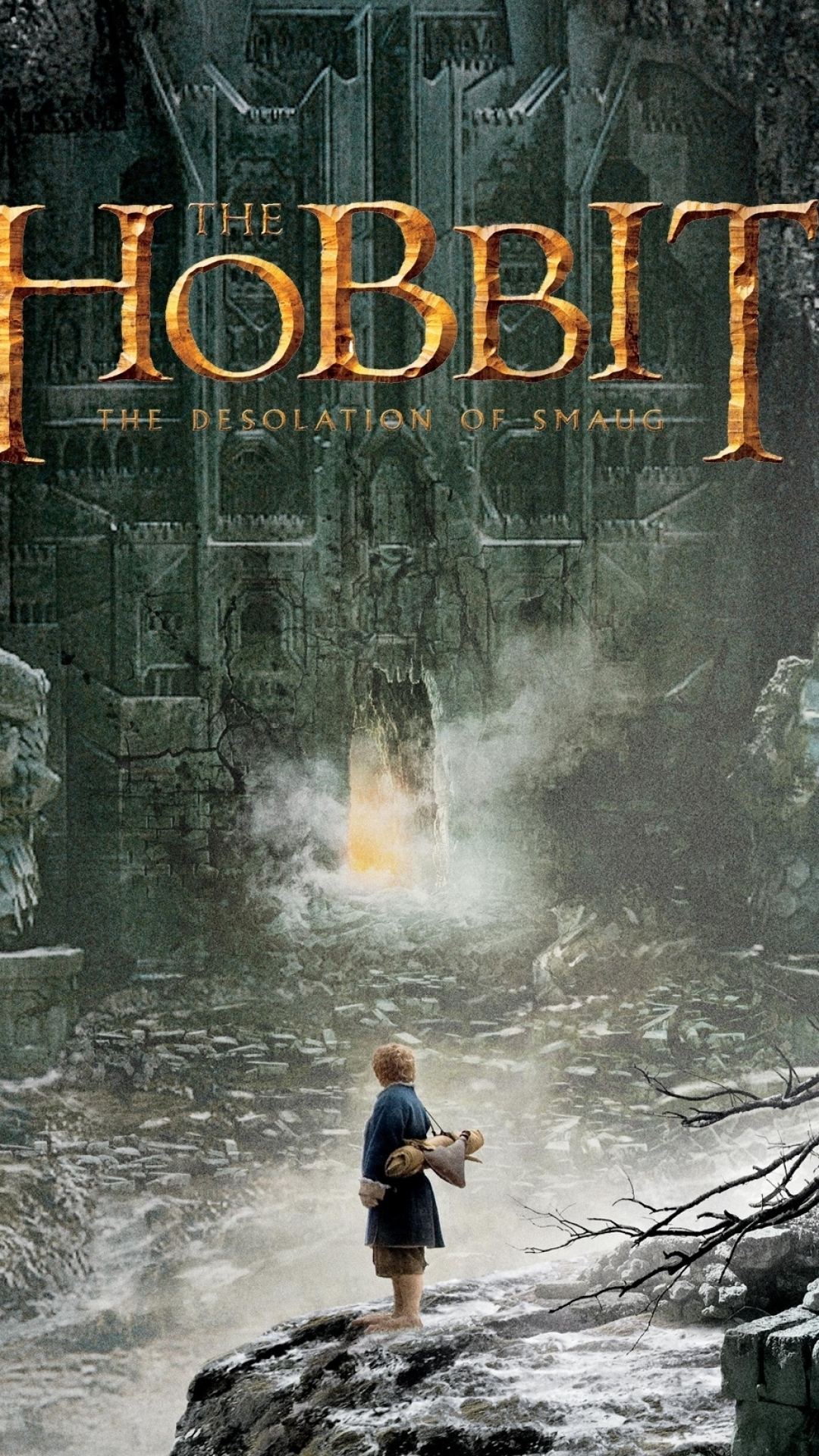 Movie The Hobbit Desolation Of Smaug 1080x1920 Mobile Wallpaper