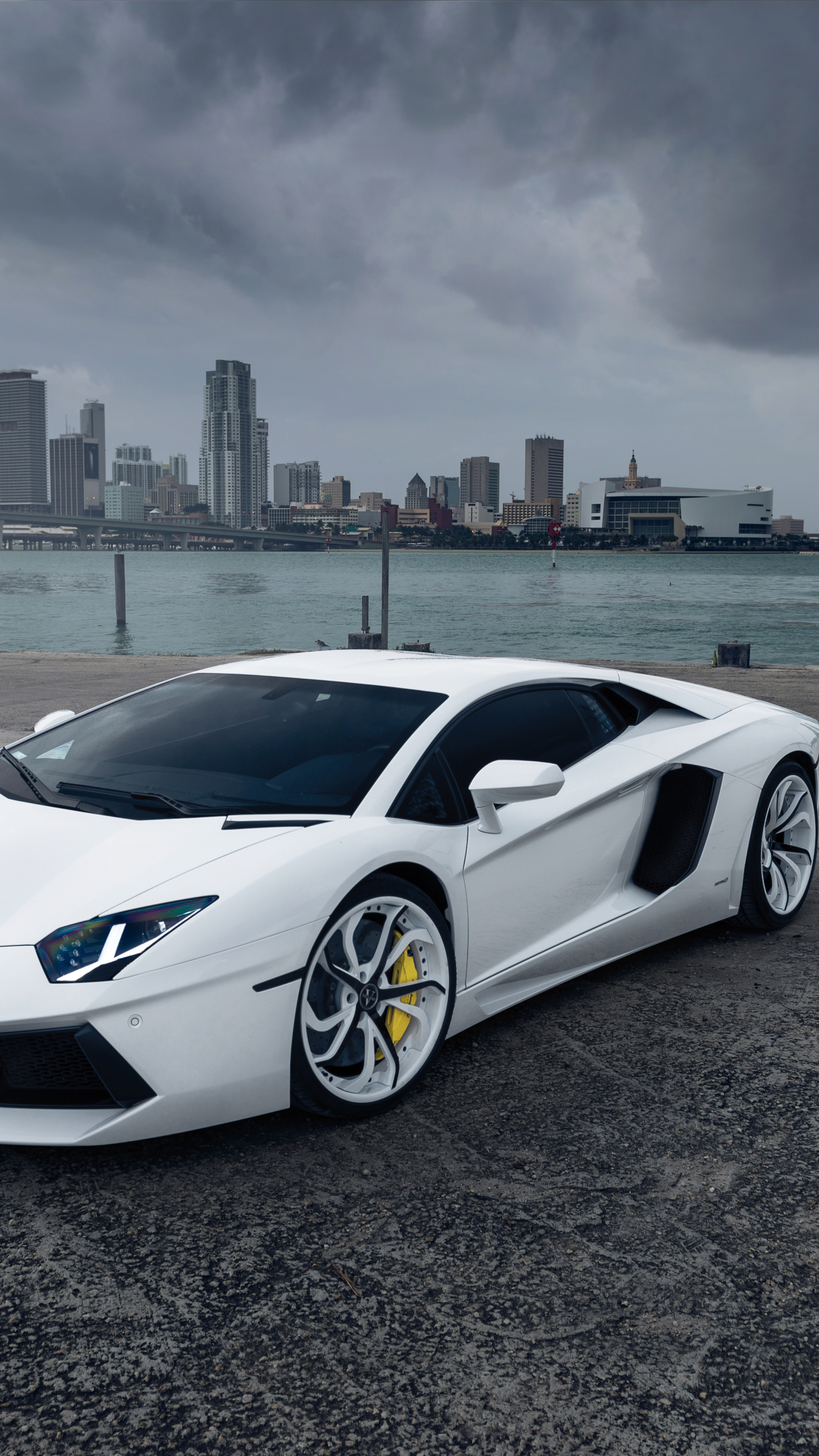 vehicles/lamborghini aventador (1440x2560) wallpaper id: 474826