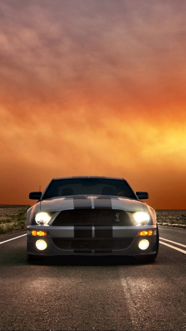 Vehicles Ford Mustang Shelby Cobra Gt 500 640x1136 Wallpaper Id