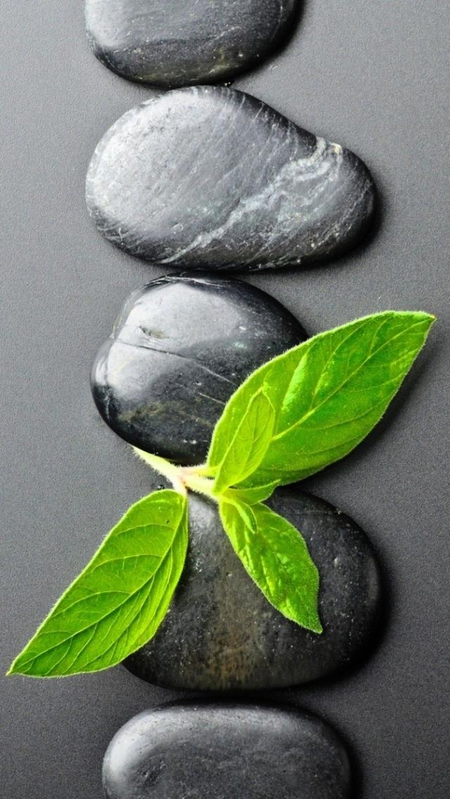 Religious Zen 640x1136 Mobile Wallpaper