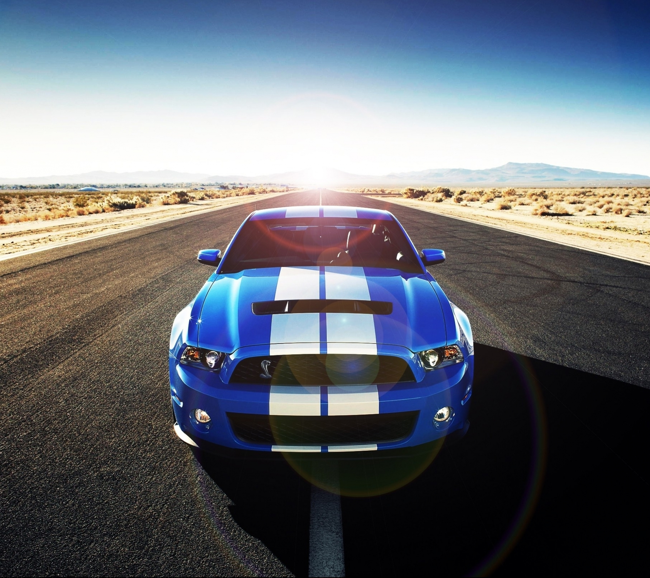 Vehicles Ford Mustang Shelby Gt500 2160x1920 Wallpaper Id