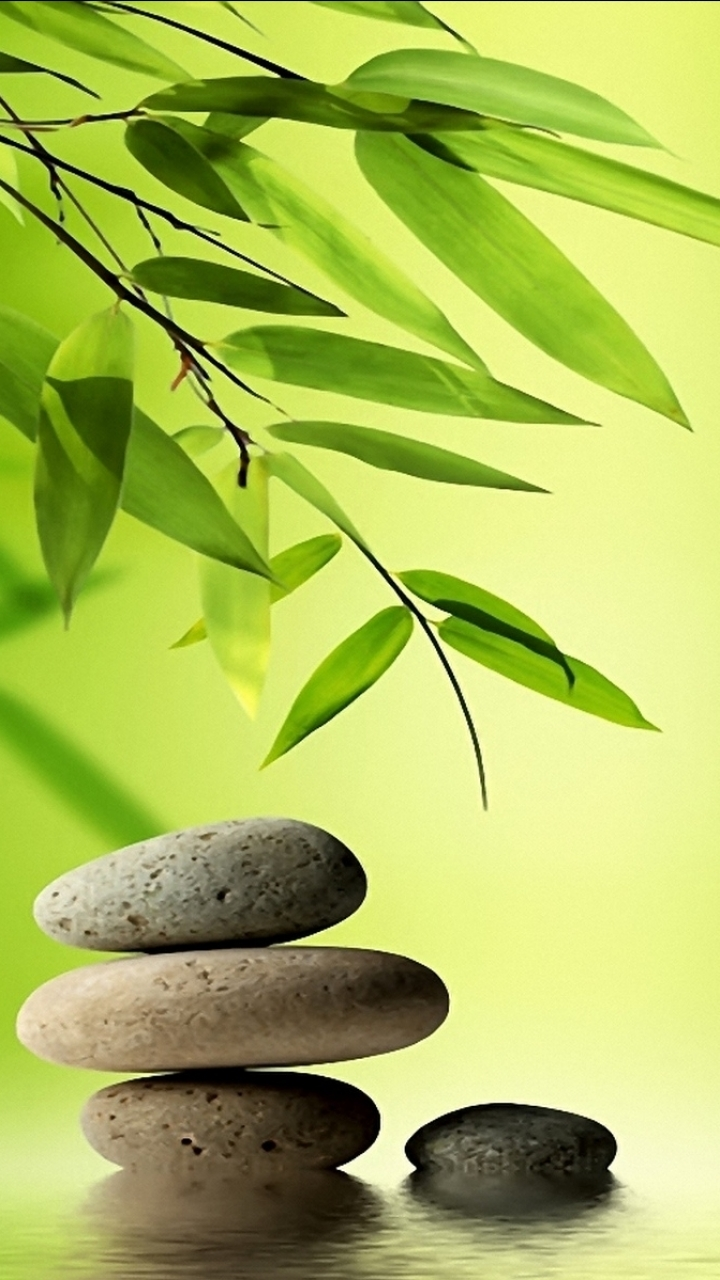 Religious Zen 720x1280 Mobile Wallpaper