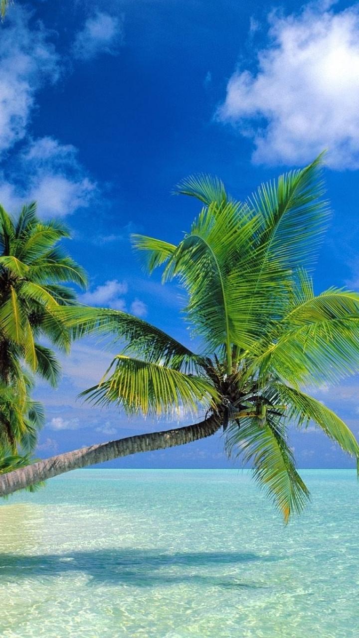 San Blas Island Holiday