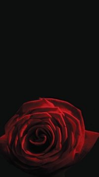 13 V For Vendetta Apple Iphone 5 640x1136 Wallpapers Mobile Abyss