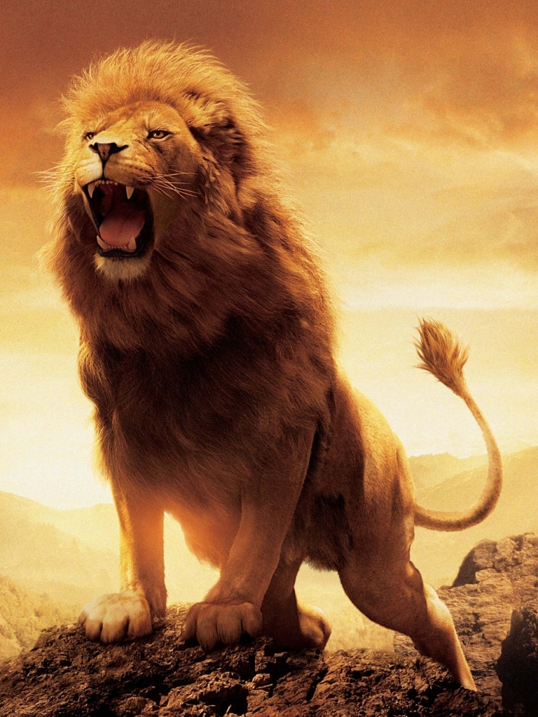 movie/the chronicles of narnia: the lion, the witch and the wardrobe