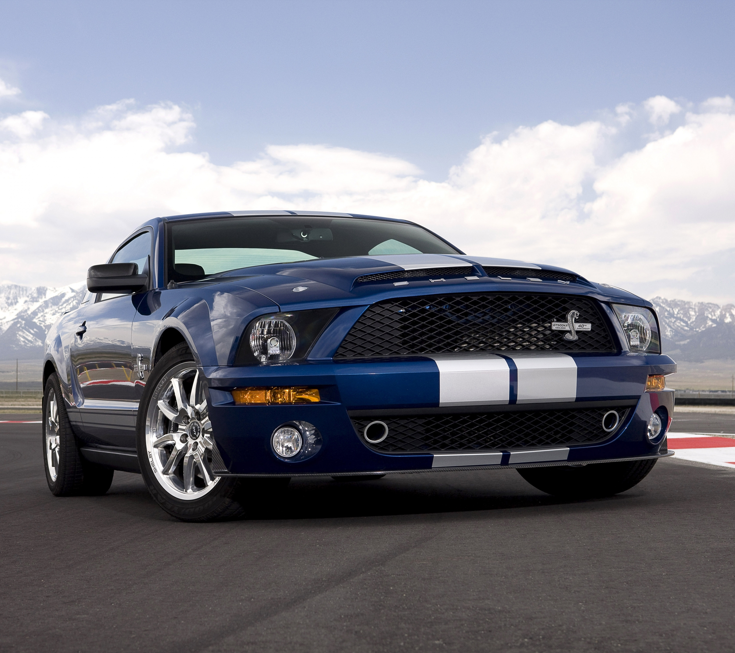 Vehicles ford mustang shelby gt500 2880x2560 mobile wallpaper wallpaper 596085