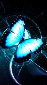 283 Butterfly Samsung Galaxy J7 720x1280 Wallpapers Mobile Abyss