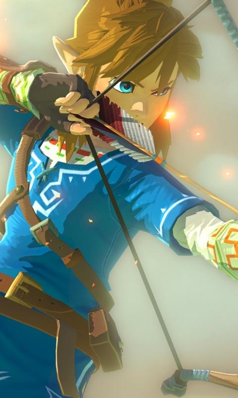 Video Gamethe Legend Of Zelda Breath Of The Wild 480x800