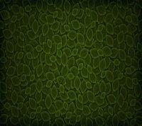 Mobile Wallpaper 6093