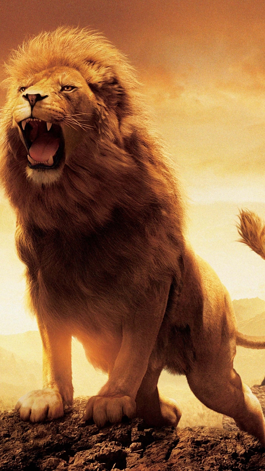 Movie/The Chronicles Of Narnia: The Lion, The Witch And The ... for Narnia Aslan Wallpaper  45jwn