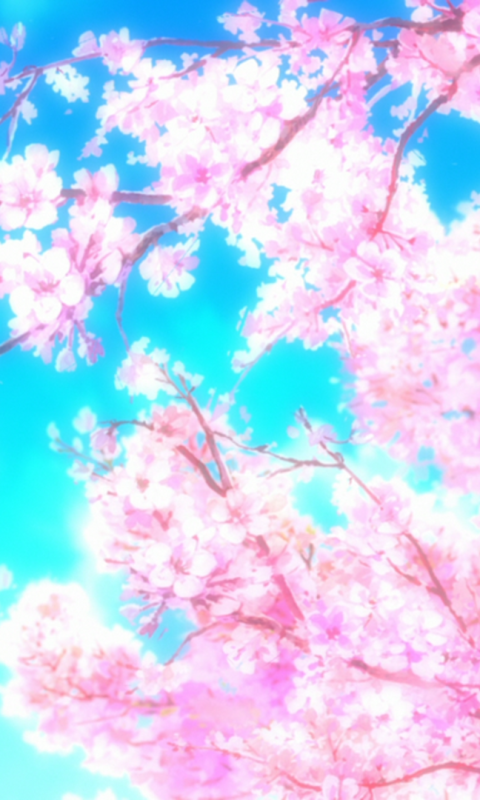 Cherry blossom wallpaper anime - Anime cherry blossom wallpaper ...