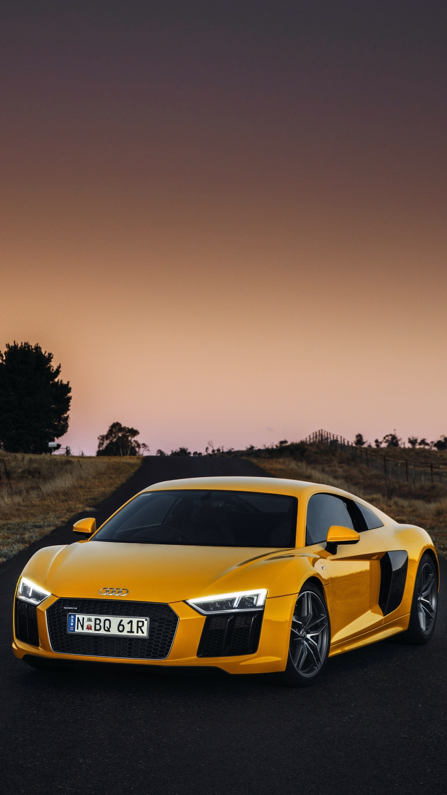 Vehicles Audi R8 1080x1920 Mobile Wallpaper