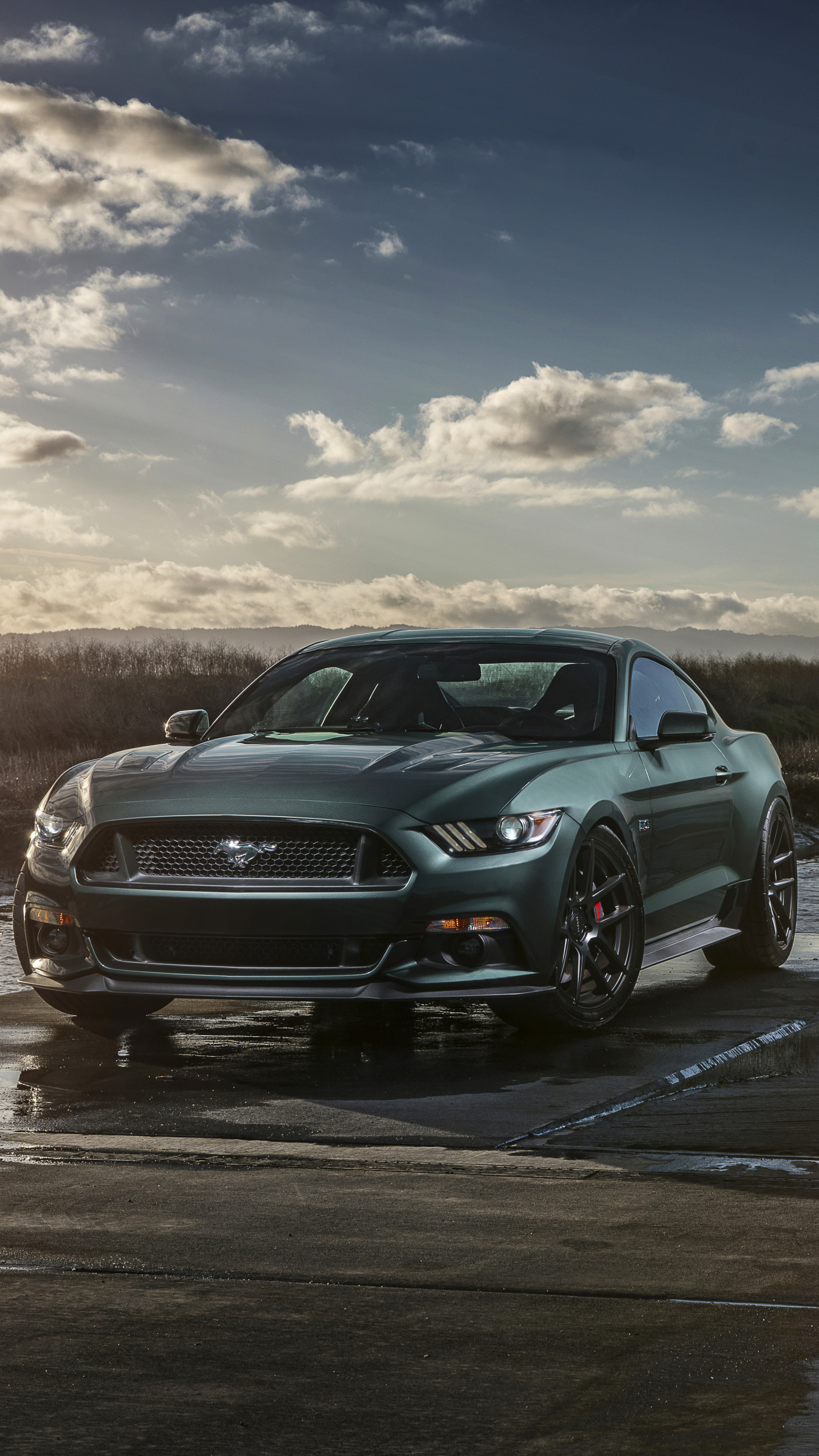 Vehicles / Ford Mustang GT (1440x2560) Mobile Wallpaper