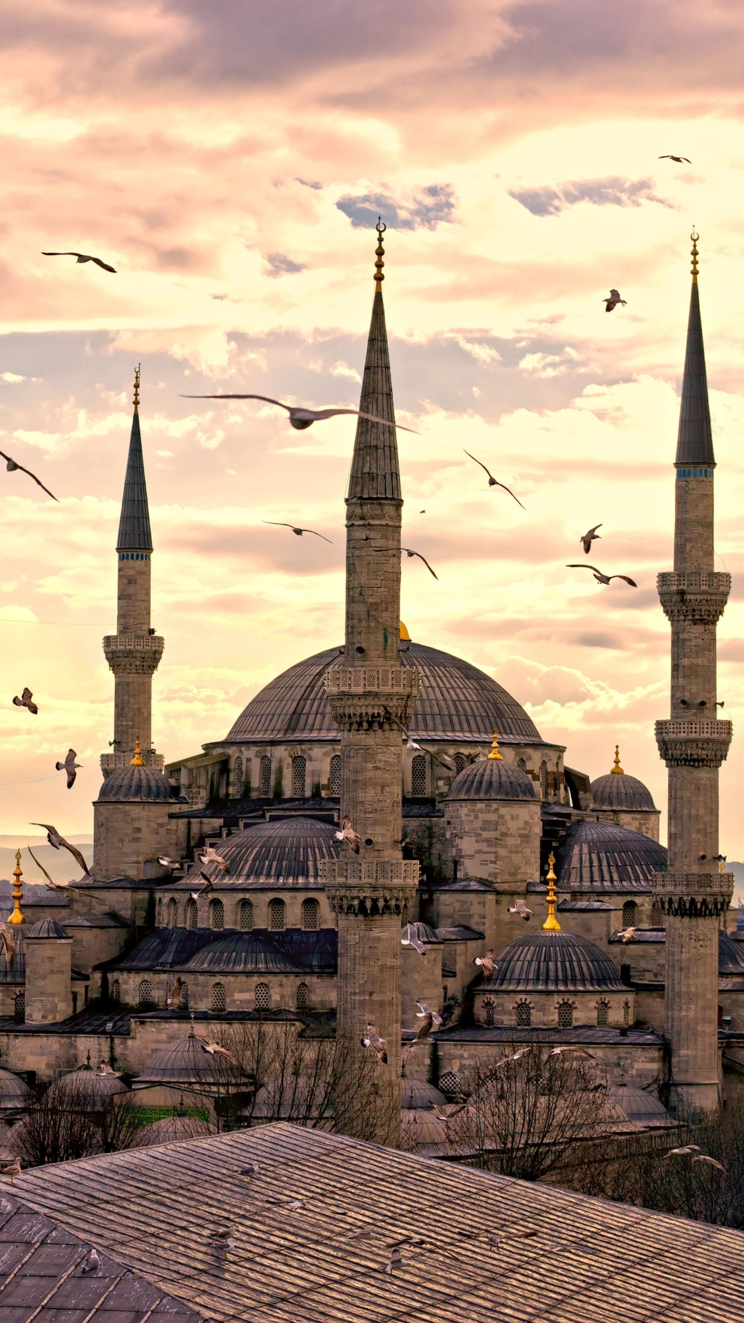 iphone 7 plus religious sultan ahmed mosque wallpaper id 644452