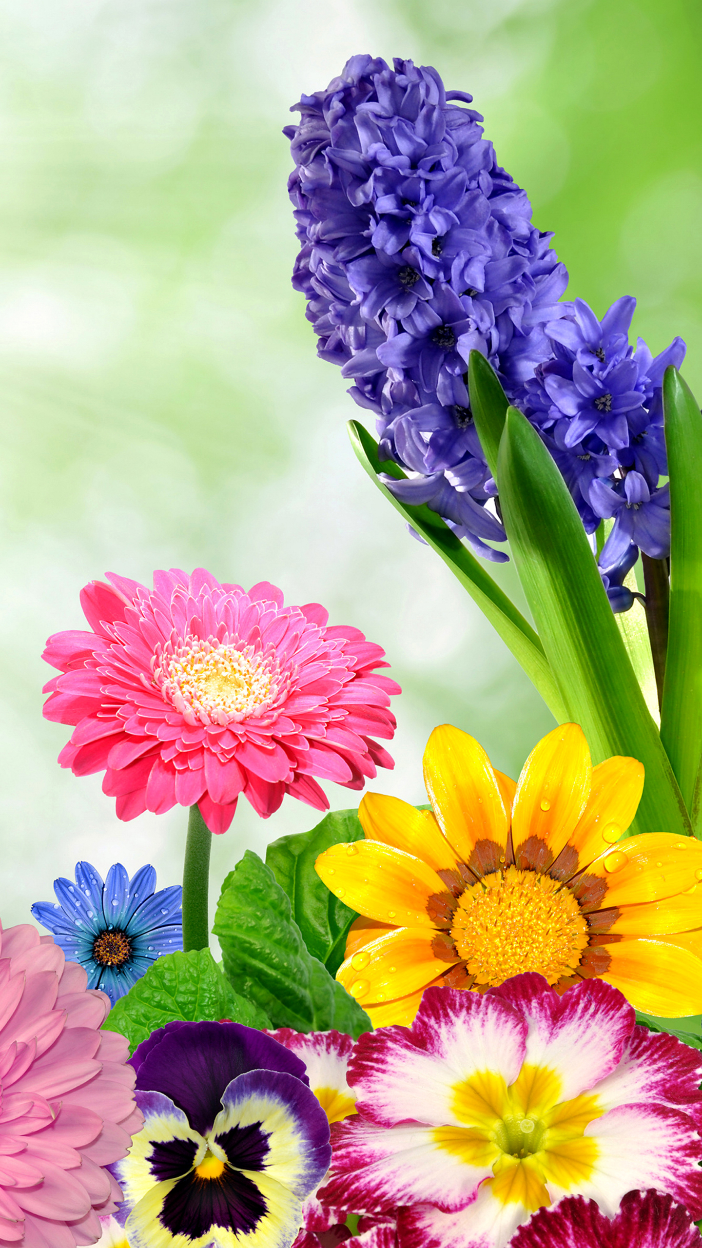 Artistic Beautiful Flower Patterns HD p Mobile Background