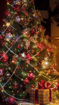239 Christmas Apple/iPhone 7 Plus