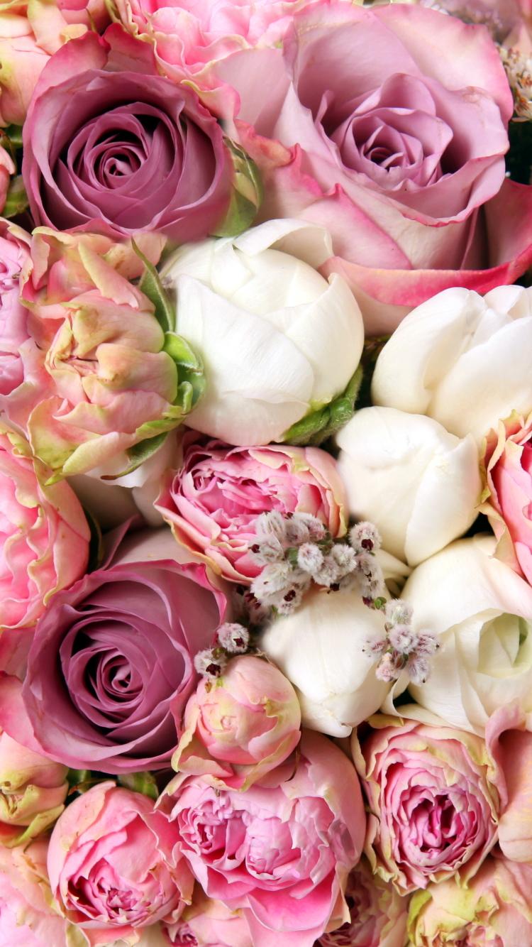 pink flower wallpaper download