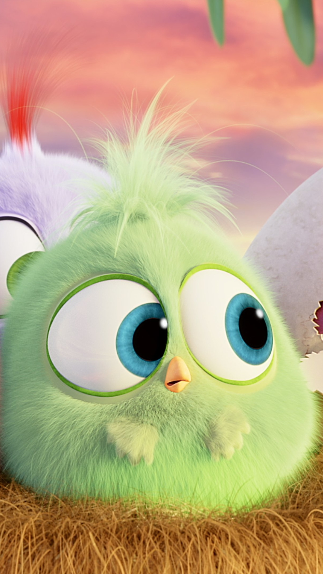 Movie The Angry Birds 1080x1920 Wallpaper ID 685966