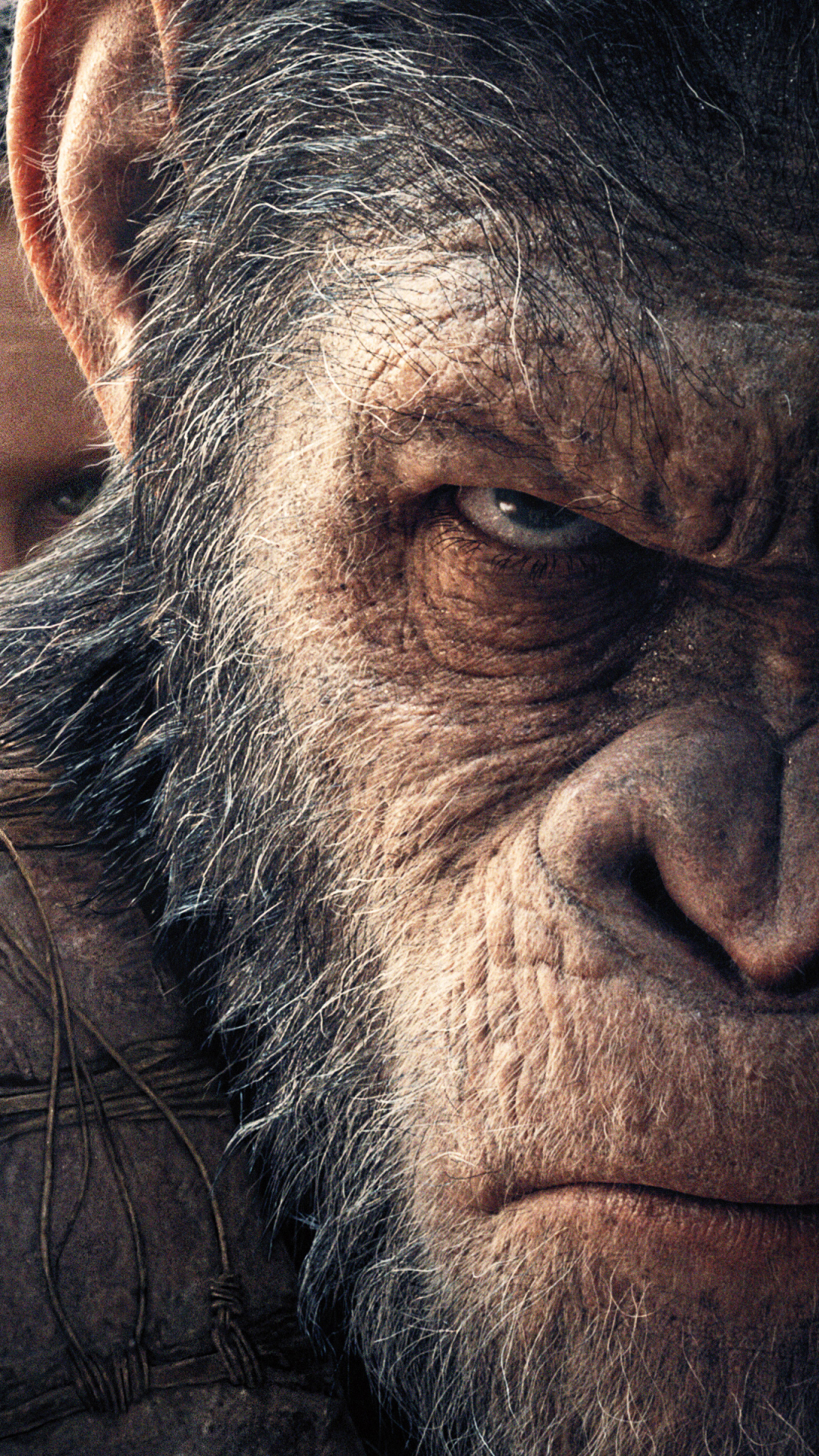 Movie War For The Planet Of The Apes 1080x1920 Wallpaper Id