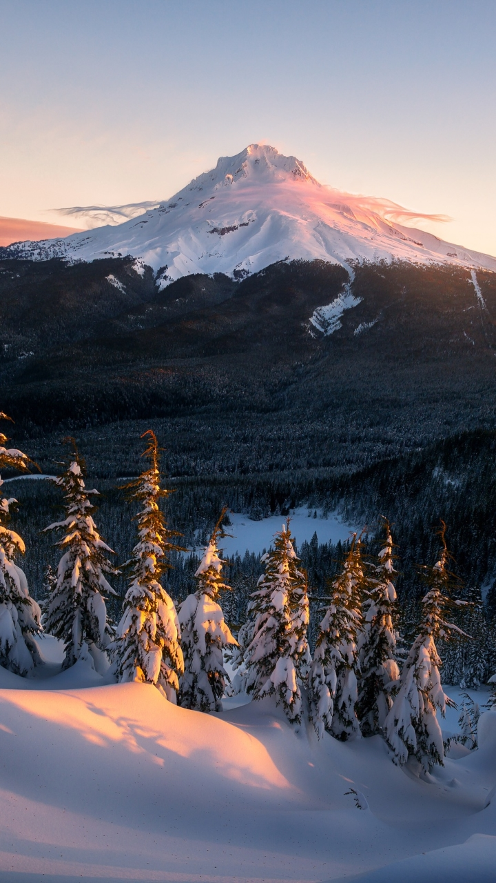earth/mount rainier (720x1280) wallpaper id: 701404 - mobile abyss