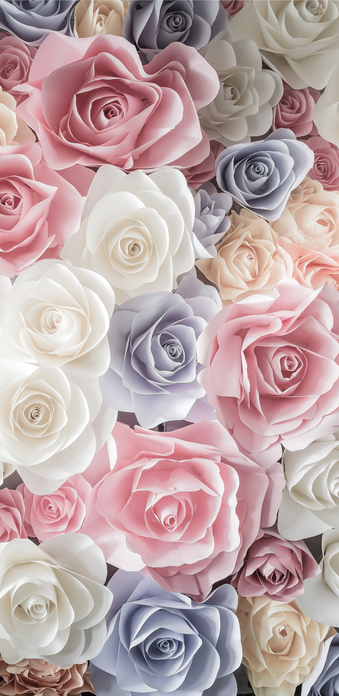 Pastel Roses Earth / Rose (1440x2960) Mobile Wallpaper