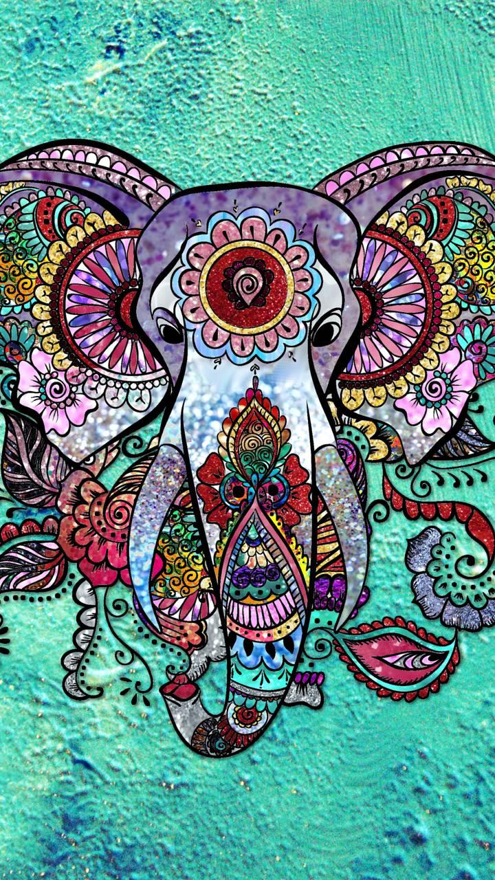 Animal Elephant 720x1280 Wallpaper ID 724628