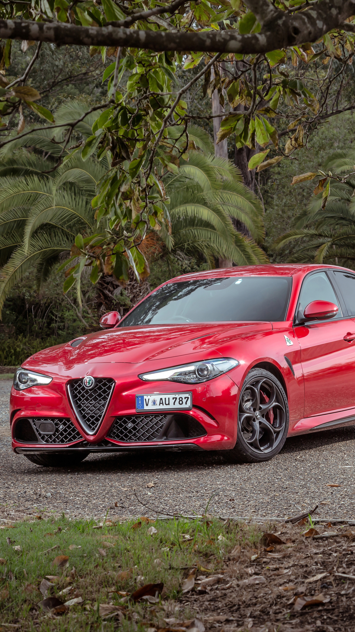 Vehicles Alfa Romeo Giulia 1440x2560 Wallpaper Id 763362