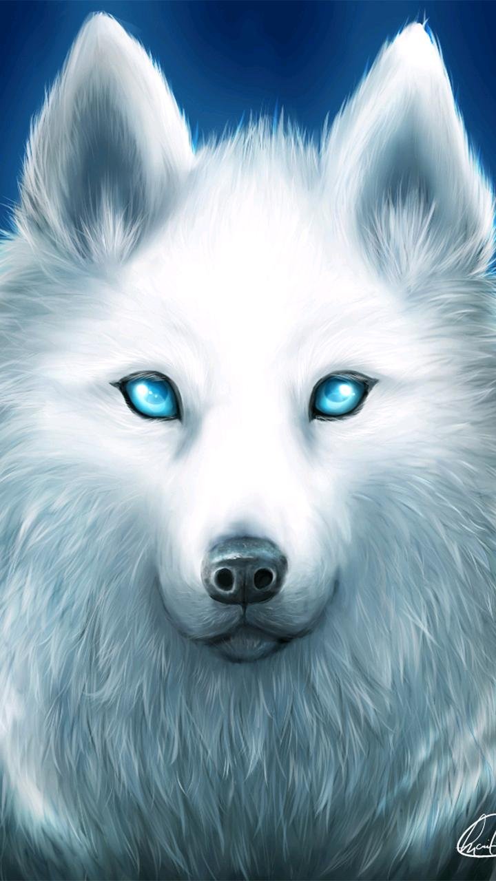 Animal Wolf 720x1280 Wallpaper Id 770064 Mobile Abyss