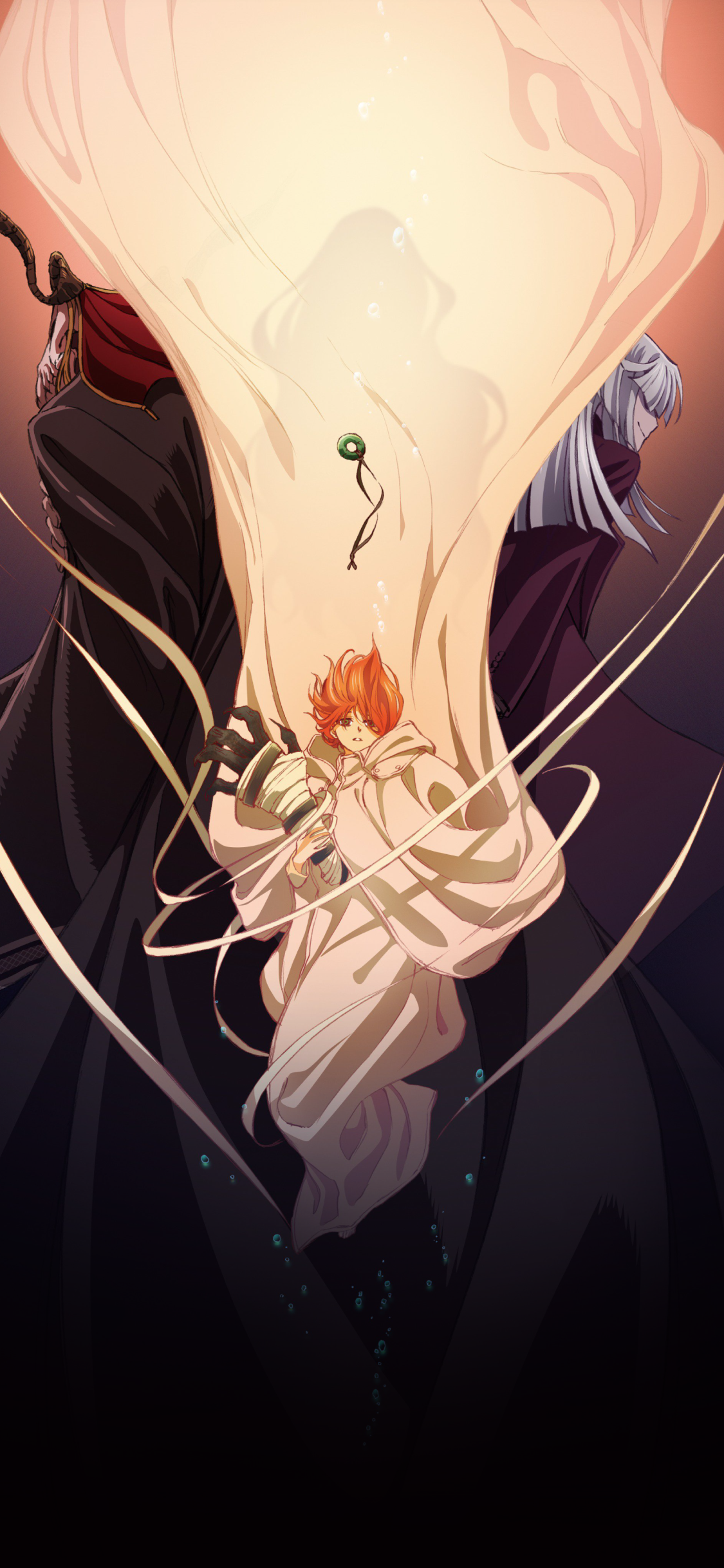 Anime The Ancient Magus Bride 1125x2436 Wallpaper Id 791510